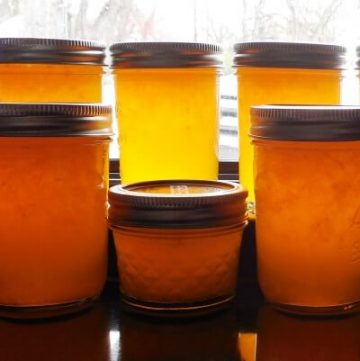 Meyer Lemon Marmalade Recipe in jars on counter