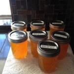 Sweet Mandarin Sunshine Jam