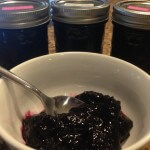 Blueberry Pizzaz Jam