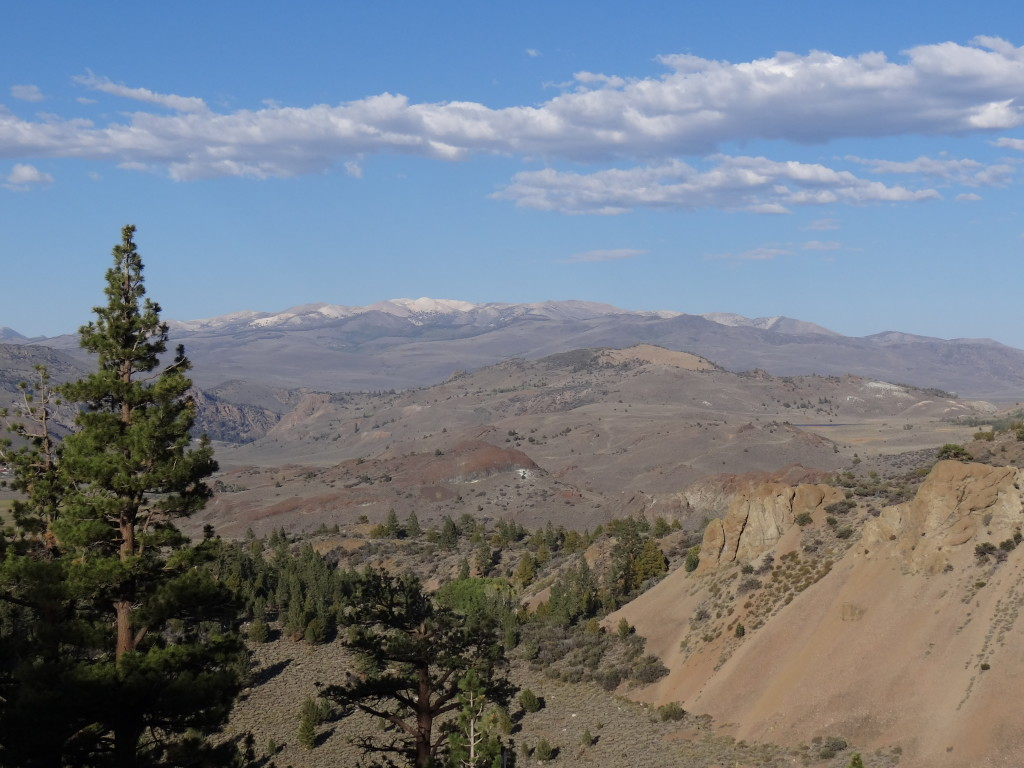 The view from Sonora Pass