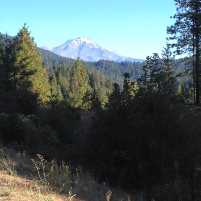 First view of Mount Shasta