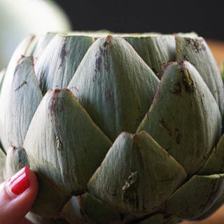 How to cook Artichokes step-by-step