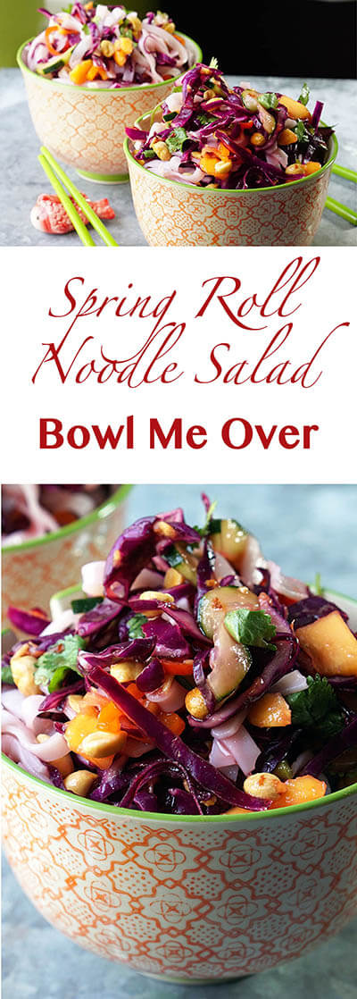 Spring_Roll_Noodle_Salad_Pin