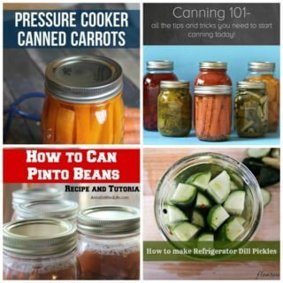 Foodie FriDIY 111 – Canning Recipes and How to