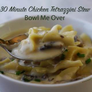 30 Minute Chicken Tetrazzini Stew