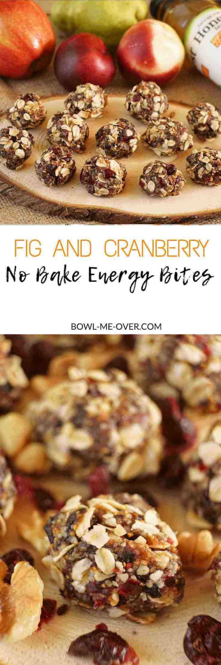 Fig and Cranberry No Bake Energy Bites are an energy packed treat you can store in your refrigerator or freezer for a on-the-go snack!