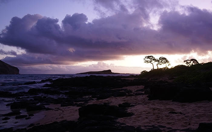 A dramatic sunrise at Kaupo Bay with waves crashing again the rocks on the shoreline. Off in the distance beautiful trees are silhouetted again the bright sunrise. Purple clouds dot the sky.