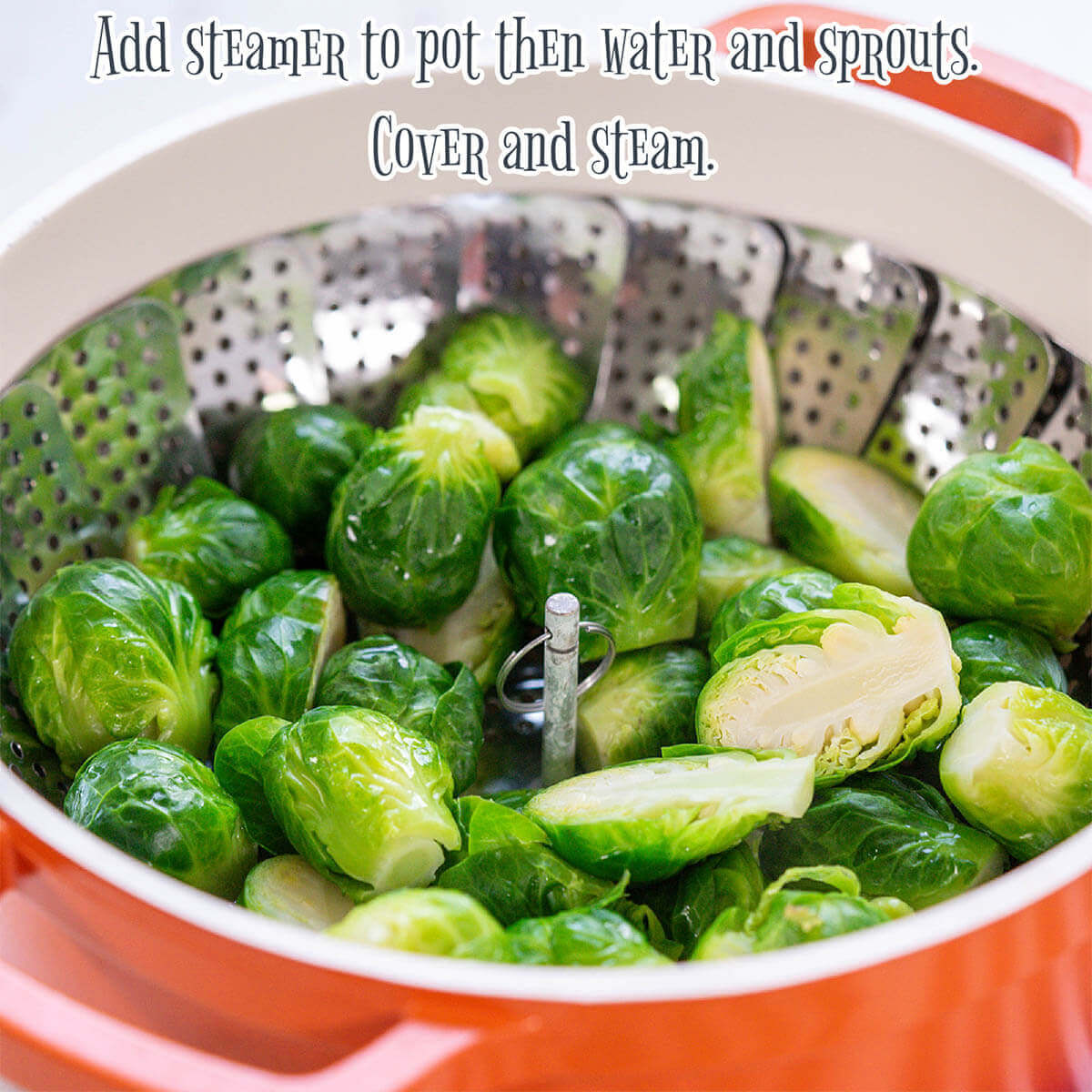 Steamed Brussels sprouts in pot.