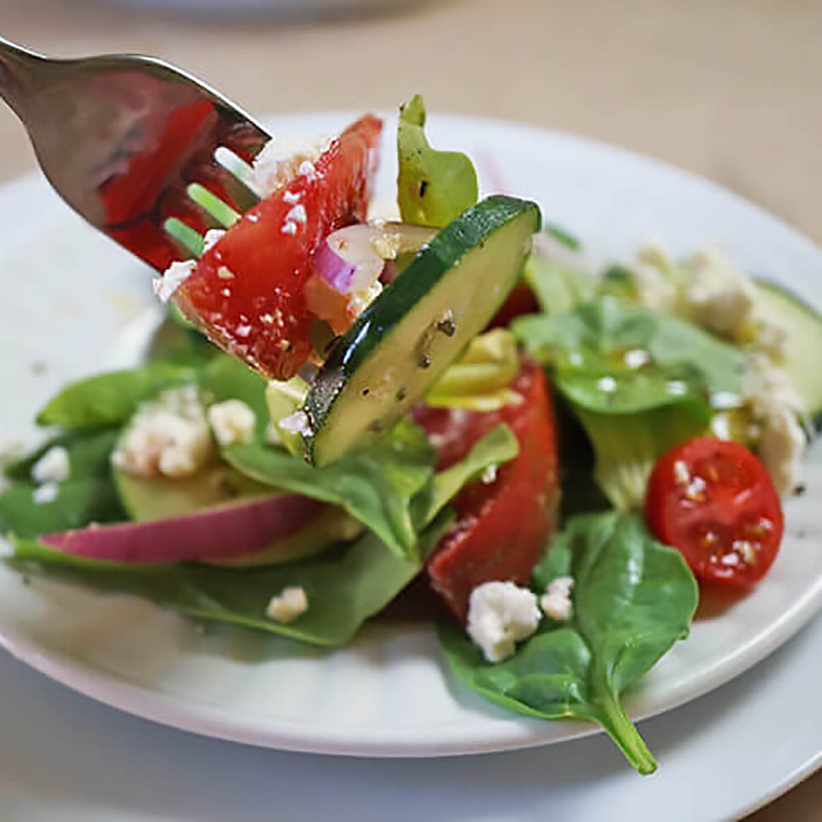 Cucumber Tomato Salad on plate with fork.